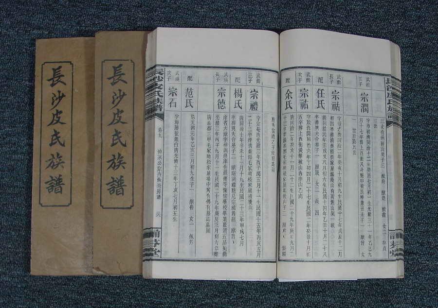 皮宗石督修:湖南《长沙皮氏族谱》十卷首一卷
